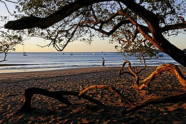Beach of Playa Hermosa, Nicoya Peninsula, Costa Rica, Central America
