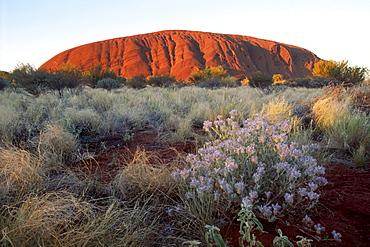 Sunset at Ayers Rock, Uluru National Park, Northern Territory, Australia