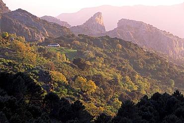 Sierra de Grazalema, Grazalema Nature Park, Andalusia, Spain, Europe