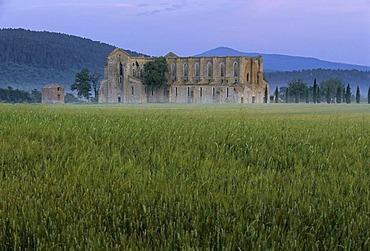 Basilica of the Cistercian Abbey Abbazia di San Galgano ruins near Chisudino, province of Siena, Tuscany, Italy, Europe
