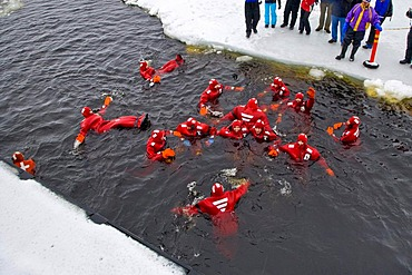 People swimming in the polar sea, Kemi, Lapland, Finland, Europe