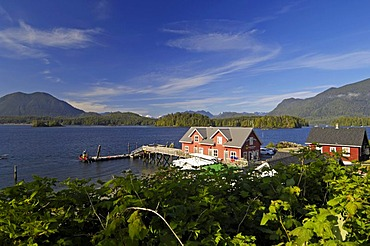 Houses on the shores of Tofino on Vancouver Island, British Columbia, Canada