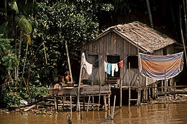 Hut on the Amazon River, Brazil, South America