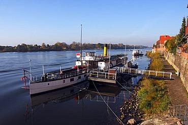 Historic steamboat Kaiser Wilhelm next to the promenade on the Elbe River in Lauenburg, Herzogtum-Lauenburg District, Schleswig-Holstein, Germany, Europe