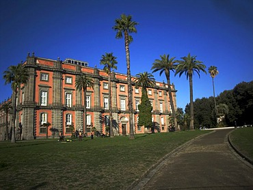 Royal Palace of Capodimonte, National Gallery and Museum by Florentine architect Ferdinando Fuga, 1743, entry grounds with palm trees, Naples, Italy, Europe