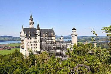 Neuschwanstein Castle with scaffolding, Allgaeu, Bavaria, Germany, Europe