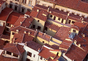 Residential buildings from above, Florence, Tuscany, Italy, Europe