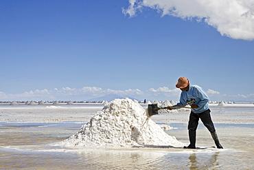 Salt worker makes Salt accumulation, salt lake Salar de Uyuni, Altiplano, Bolivia, South America