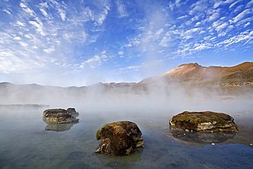 Natural thermal springs Polloquere, salt lake Salar de Surire, national park Reserva Nacional Las Vicunas, Chile, South America