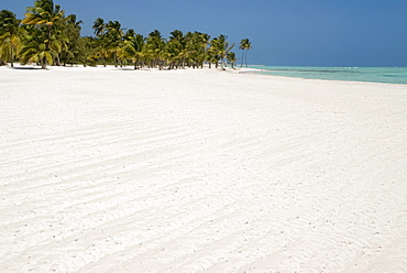 Palm beach, Punta Cana, Dominican Republic, Caribbean