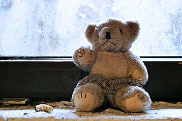 Cellar window with toy bear