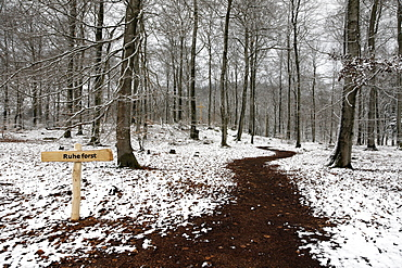 "Sign, ""Ruheforst"" marking a woodland burial site, alternative cemetery, Palatinate region, Rhineland-Palatinate, Germany, Europe"