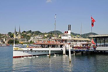 Excursion boat, landing stage, swans, riverside, Vierwaldstaetter See or Lake Lucerne, Swiss flag, Switzerland, Europe