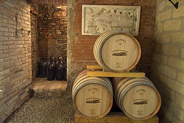 Wine cellar in the castle Castello di Razzano near Alfiano Natta north of Asti Piedmont Piemonte Italy