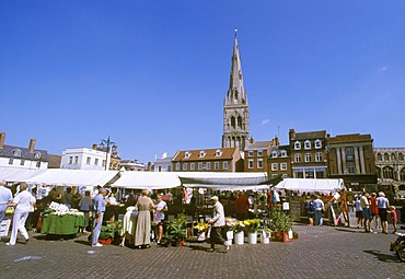 Newark on Trent Nottinghamshire England Geat Britain market place in front of the church Mary Magdalene