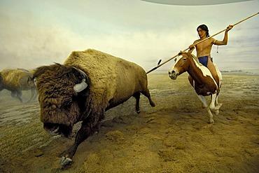 Hunting native American and Bison buffalo, Ueberseemuseum Bremen, Germany