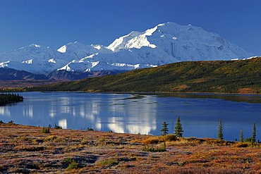 Autumn in Denali National Park Mount McKinley is mirrored in Wonderlake , Alaska , USA