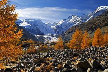 Bernina Range with Piz Bernina, Biancograd , Morteratsch Glacier, in autumn Graubunden, Switzerland