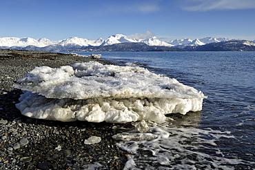 Ice floe on the shore of Kachemak Bay, Kenai Peninsula, Alaska, USA