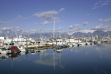 The small boat harbour at the Homer Spit Kenai peninsula Homer Alaska USA