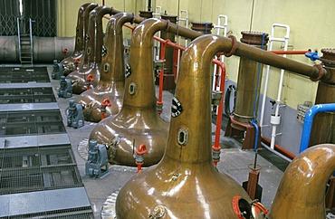 Distilling flasks at Glenfiddich Destillery Dufftown Scotland