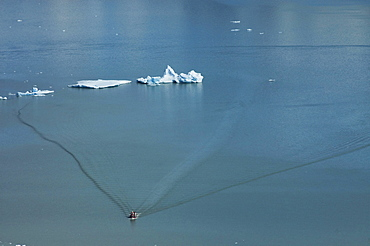 Floating ice and tour boat, Lago Grey, Torres del Paine National Park, Patagonia, Chile