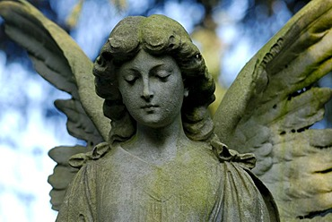 Statue of an angel on a cemetery