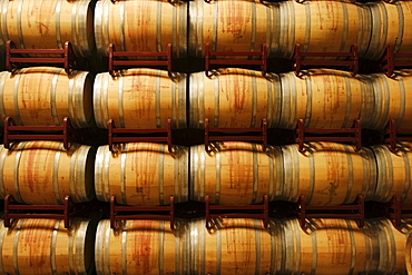 Wine barrels, La Rioja, Spain