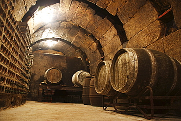 Wine barrels in a wine cellar, La Rioja, Spain