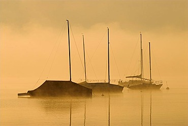 Morning fog over sailing boats on Lake Starnberger See near Seeshaupt, Bavaria, Germany, Europe