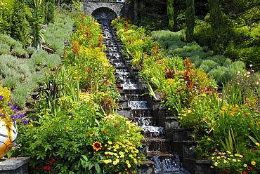 Mainau Island, flowers, water steps, Baden-Wuerttemberg, Germany, Europe