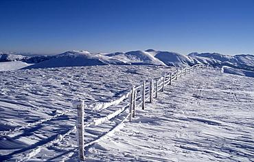 Ice-covered fence, Blutige Alm, Nock Range, Carinthia, Austria, Europe