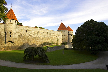 Town wall with watch towers around Tallinn, Estonia, Baltic States, Northern Europe
