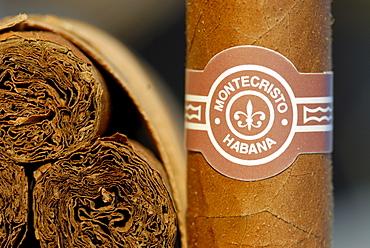 Cigars, Montecristo brand, Havana, Cuba