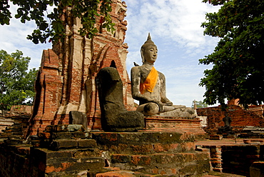 Buddha statue, Wat Mahathat Ayutthaya Temple, Siam, Thailand, Asia