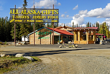 Souvenir shop in Tok, Alaska Highway, Alaska, USA