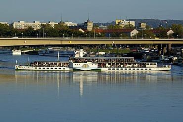 Saxony steam navigation paddle wheel steamer on river Elbe Dresden Saxony Germany