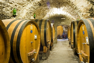 Wine barrels in a wine cellar, Castellina in Chianti Fattoria, Chianti Region, Tuscany, Italy