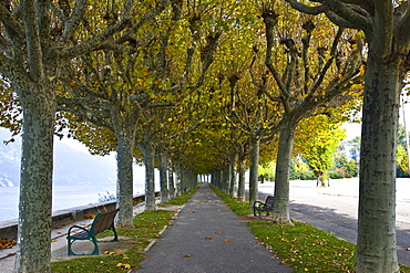 Boulevard de Lac, Aix-les-Bains, Savoie, Rhone Alps, France