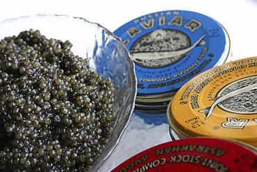 Russian caviar served on ice