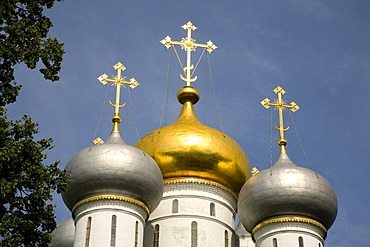New Maiden Monastery Cupolas of the Smolensker Cathedral, Moscow, Russia, East Europe, Europe