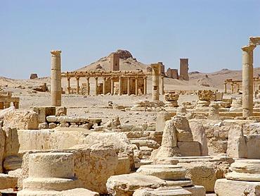 Ruins in palmyra