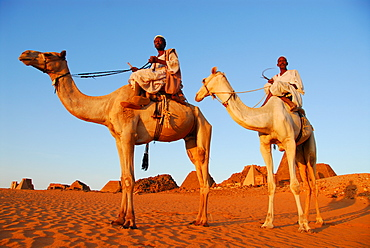 Nomads on camels in front of the pyramids of Meroe, Meroe, Sudan