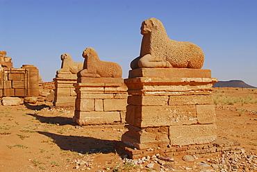 Temple for the god Amun, Naga, Sudan, Africa