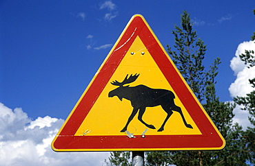 Warning sign moose crossing near Kuipio, Finland, Scandinavia, Europe