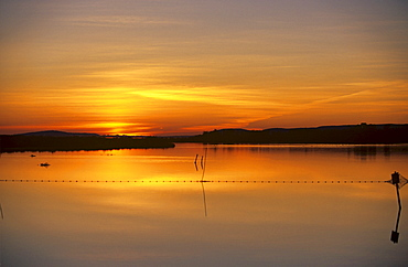 Sunset at the Etang, Languedoc-Roussillon, France