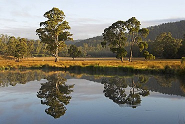Lake near Launceston, Northern Tasmania, Australia