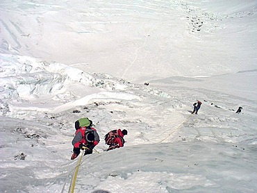 Climbers on fixed ropes in the steep, icy Lhotse Face, 6900m, on the way to Camp III, 3, Mount Everest, Himalaya, Nepal