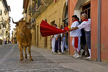 Fiesta and bull run in the streets of Puenta La Reina, Navarra, Spain