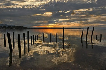 Piles after sunset in Lake Chiemsee, Bavaria, Germany